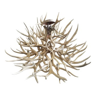 Vintage 12-Light Mule Deer Chandelier