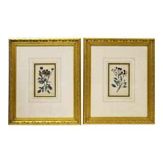 19th C. Framed Botanicals, Pair