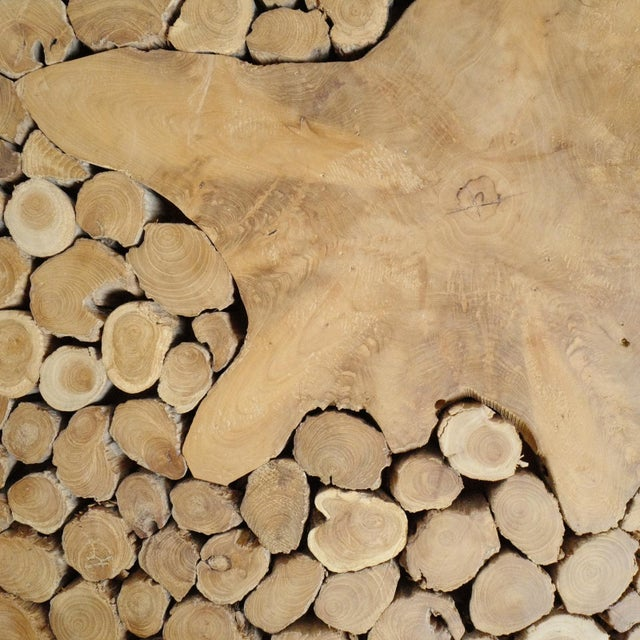 Teak Root Coffee Table For Sale In Los Angeles - Image 6 of 7