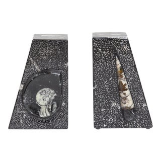 AURA LONDON Orthoceras Sculpture Bookends - a Pair For Sale
