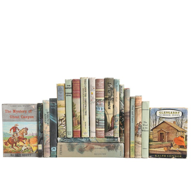 American Classical Vintage Stories for Boys & Girls - Set of 20 For Sale - Image 3 of 3