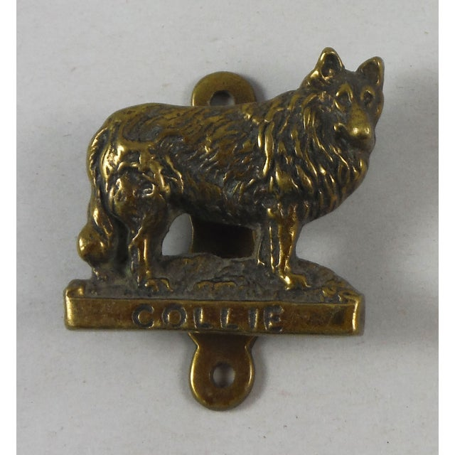 Brass Collie Dog Door Knocker - Image 2 of 4