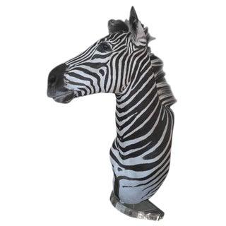 Zebra Mount Taxidermy For Sale
