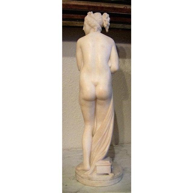 19c Italian Marble Figurine of Venus For Sale In Dallas - Image 6 of 8