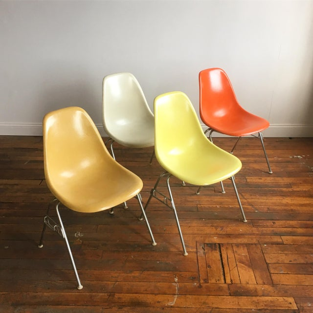 Vintage Herman Miller Eames Fiberglass Shell Chairs - Set of 4 - Image 10 of 10