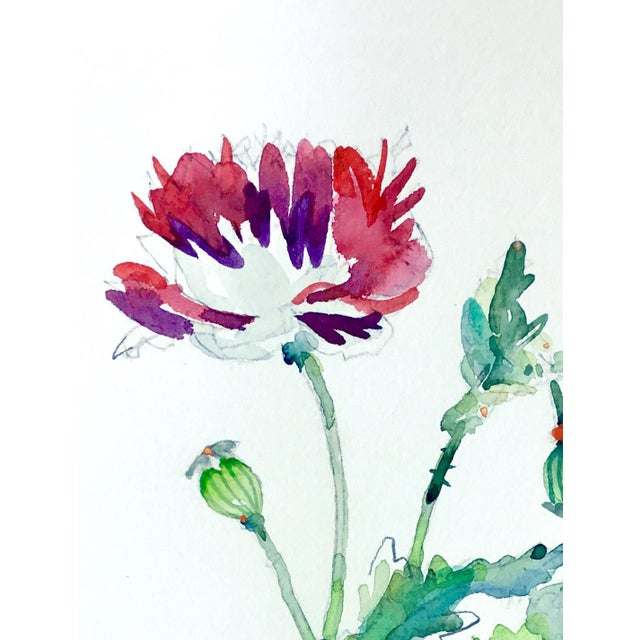 Original watercolor painting on arches cold press, Botanical Art.