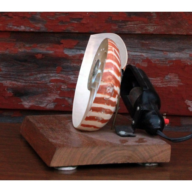 Vintage Nautilus Shell Accent Lamp/Night Light For Sale - Image 9 of 9