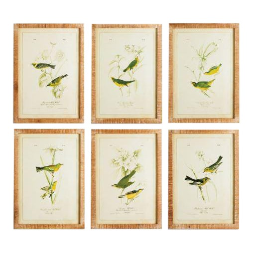 "Contemporary ""The Green Birds Study"" Prints by Kenneth Ludwig Chicago, Framed - Set of 6 For Sale"