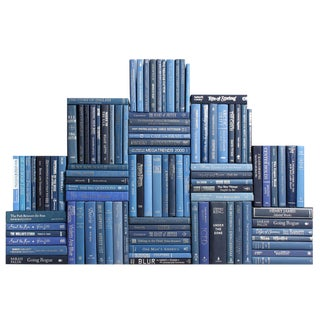 Modern Summit Book Wall : Set of One Hundred Decorative Books in Blue and Silver