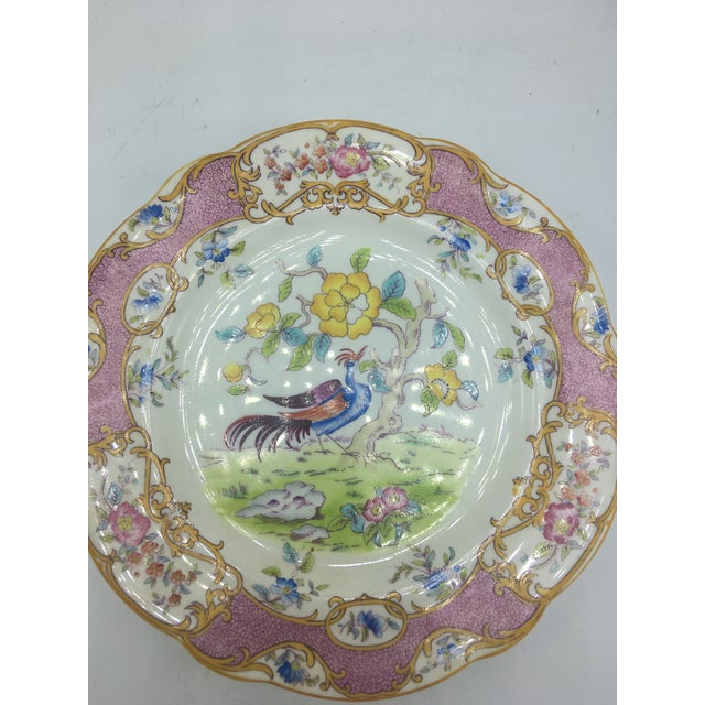 Lovely vintage dinner plate by Coalport. This beautiful piece is a perfect display addition!