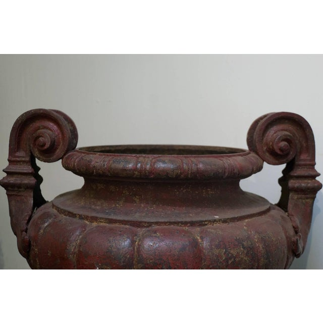 French 19th Century Cast Iron Medici Urns Cast by Durenne-Founder in Aix - a Pair For Sale - Image 3 of 6