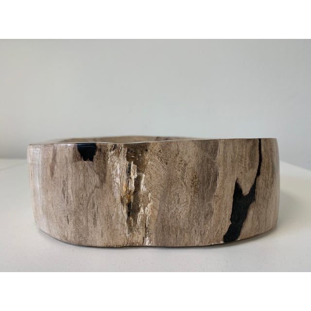 Contemporary Petrified Wood Catchall Bowl For Sale - Image 3 of 10