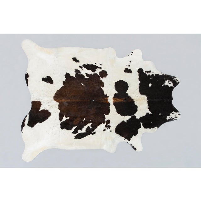 Contemporary Spotted Genuine Brazilian Cowhide For Sale - Image 3 of 3