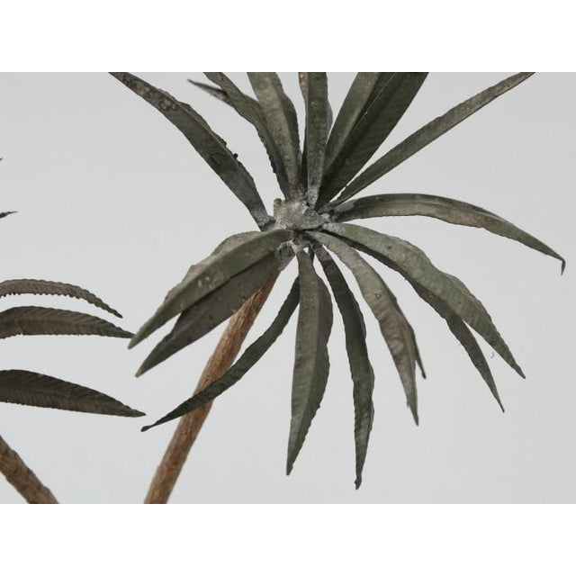 Brown French Metal Palm Trees in Clay Pots For Sale - Image 8 of 13
