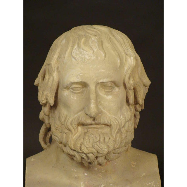 Composition Bust of Euripides - Image 5 of 11