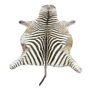 Zebra Skin Rug For Sale