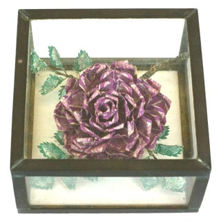 """Unusual """"Stamp"""" Rose in Box For Sale"""