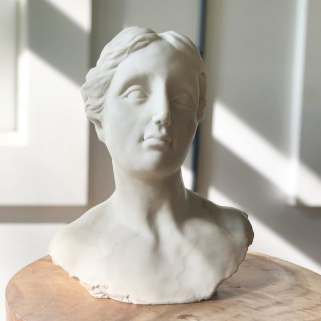 Resin Bust of Diana Sculpture For Sale - Image 7 of 7