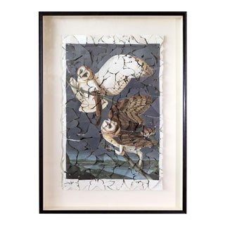 Butterfly Box 'Barn Owl' Print For Sale