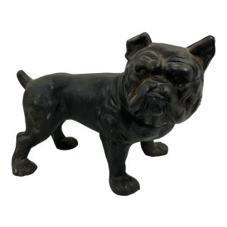 Cast Iron Bull Dog Bank For Sale