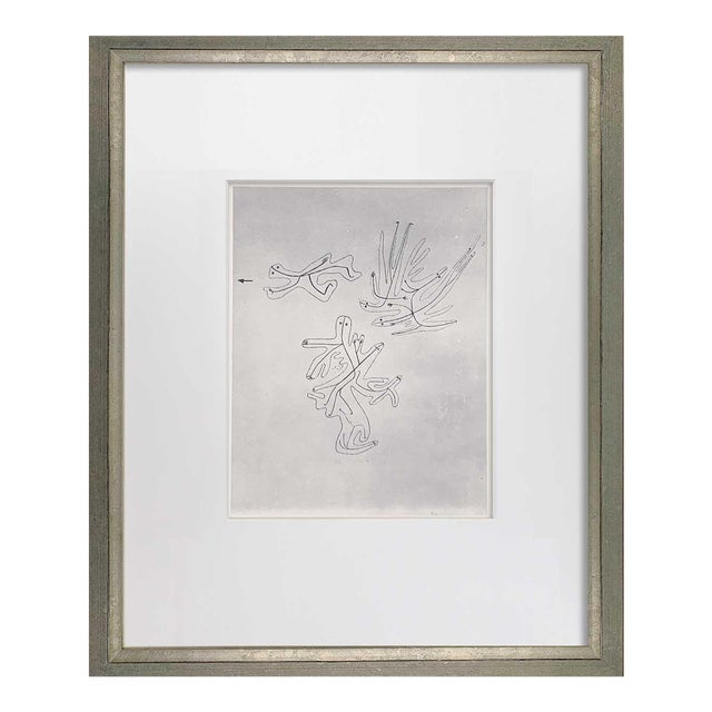 "Paul Klee Lithograph Ltd Edition ""Spirits of the Air"" For Sale"