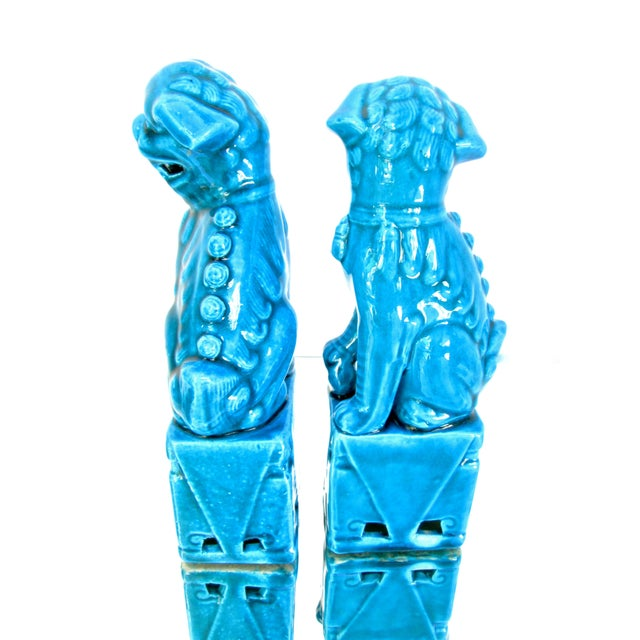 Turquoise Foo Dogs - A Pair - Image 3 of 10