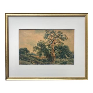 Antique European School Watercolor Landscape With Trees 19th Century For Sale