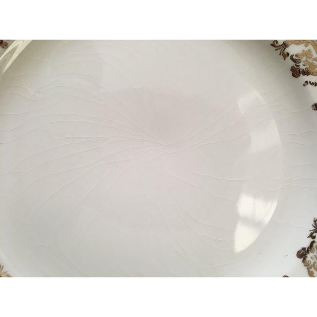 Gold Patterned Rim Plates - Set of 5 For Sale - Image 4 of 5