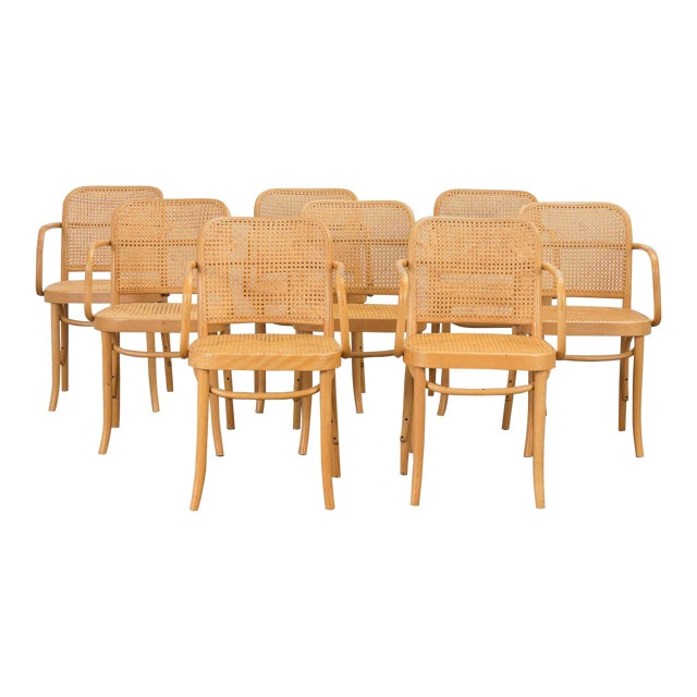 Joseph Hoffman Bentwood Chairs - Set of 8 For Sale