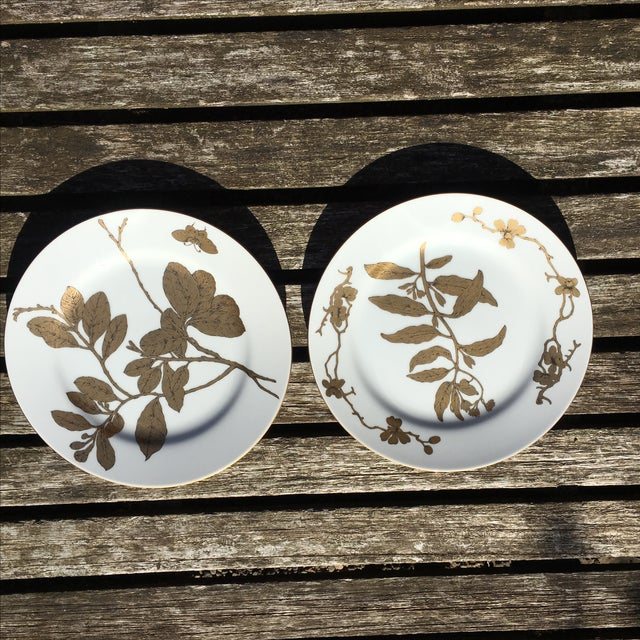 Vintage Gold and White Porcelain Plates - Pair - Image 2 of 7