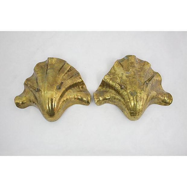 Brass Clam Shells - A Pair For Sale - Image 9 of 10