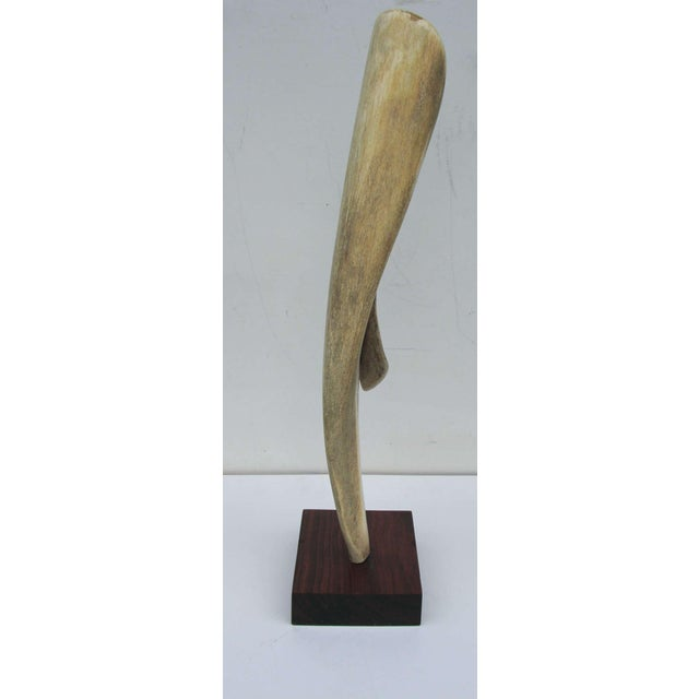 Bone Alex Taller Abstract Bone Sculpture For Sale - Image 7 of 10