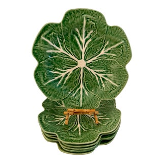 Set of 6 Bordallo Pinheiro Cabbage Dinner Plates For Sale