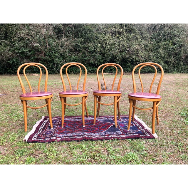 Amazing Thonet style cafe chairs made in Romania. Incredibly study.