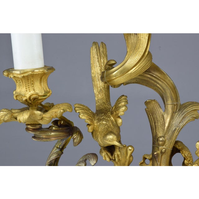 French Pair of Antique Louis VXI Ormolu Electrified Candelabras For Sale - Image 10 of 13