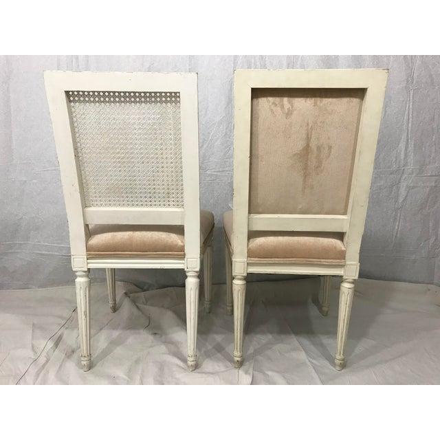 Louis XVI Style Dining Chairs Set of 8 For Sale - Image 6 of 9