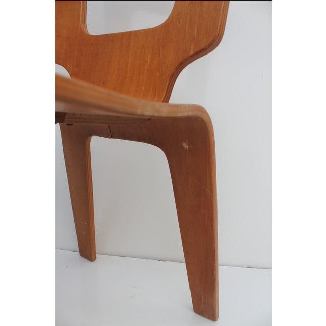 Thaden Jordan Mid-Century Bentwood Birch Chair For Sale - Image 10 of 11