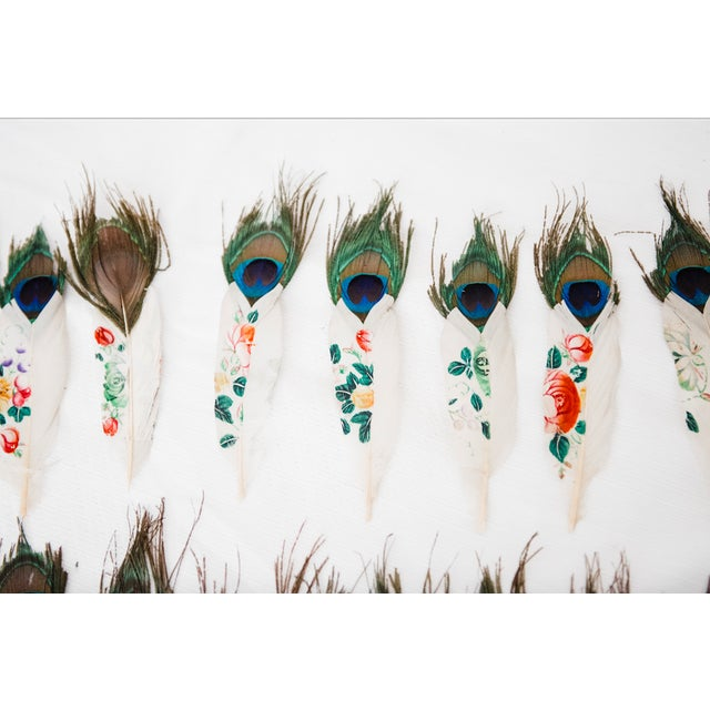 Painted Peacock Feathers - Set of 14 - Image 4 of 8