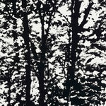 Sample - Schumacher Woodland Wallpaper in Night