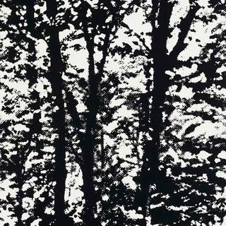 Sample - Schumacher Woodland Wallpaper in Night For Sale