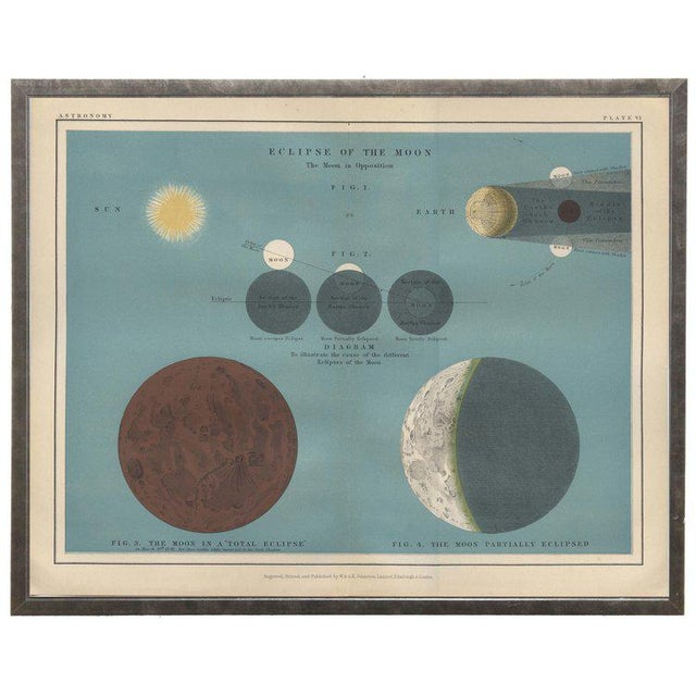 """Illustration Ocean Blue Astronomy Plate VI in Shadowbox 19 1/2x 15 1/2"""" For Sale - Image 3 of 3"""