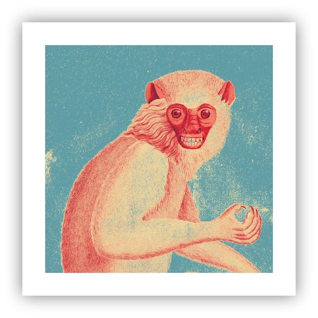 Antique 'Red Monkey' Archival Print For Sale - Image 4 of 4