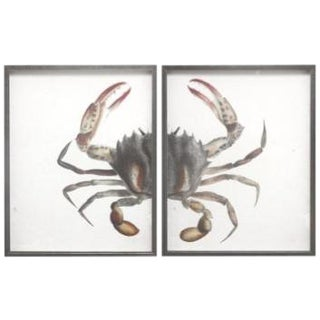 Red Splinter Crab in Pewter Frame - Total 40x26 For Sale