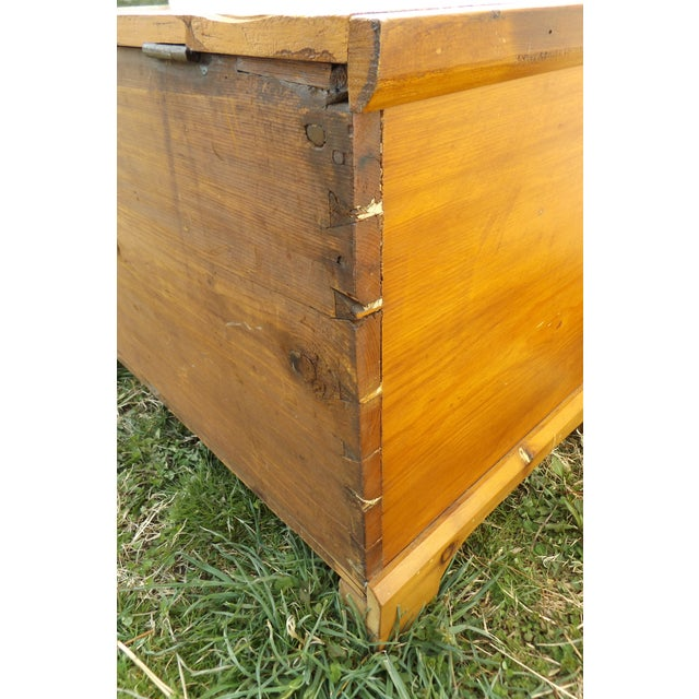 Brown Primitive Antique Dovetailed Pine Hope Chest For Sale - Image 8 of 10