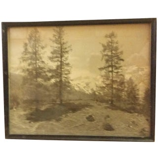Early 20th-C. Ringelspitz Alps Photography