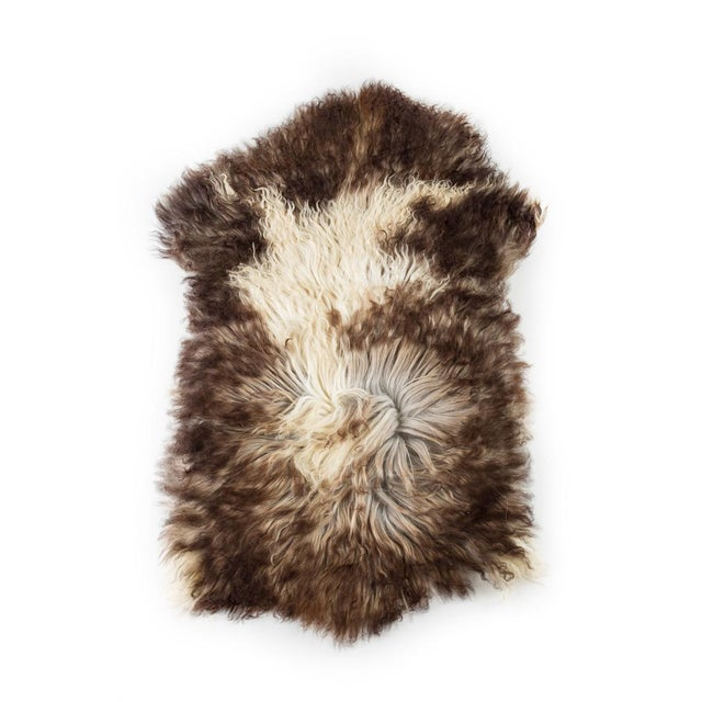 """Brown Contemporary Natural Sheepskin Pelt - 2'0""""x3'0"""" For Sale - Image 8 of 8"""