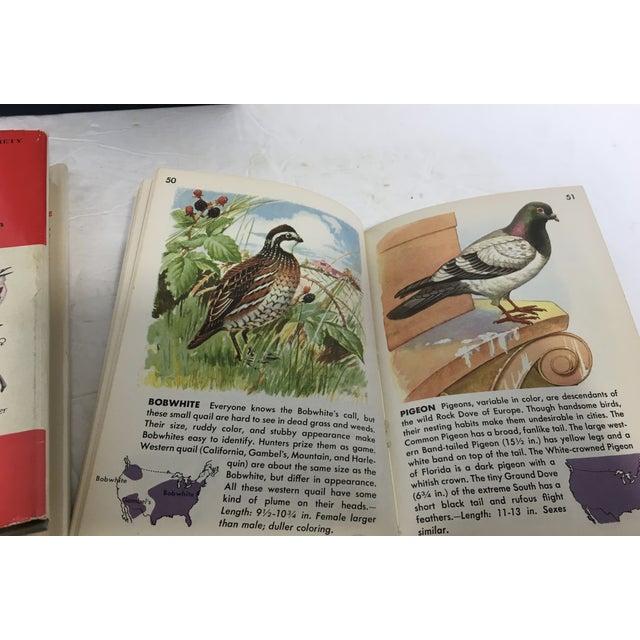 Vintage Ornithology Books - Set of 3 - Image 8 of 9