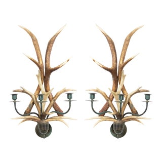 Rustic Horn and Brass Wall Sconces - a Pair For Sale