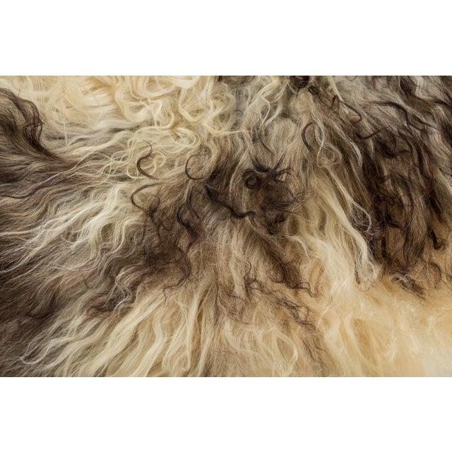"Contemporary Long Wool Sheepskin Pelt, Handmade Rug - 2'2""x3'6"" For Sale - Image 4 of 6"