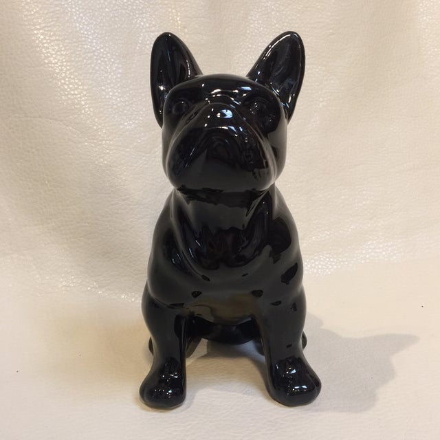 Perfect Pooch For Sale - Image 4 of 7